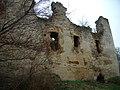 Руїни замку в с. Новомалин (ракурс 14).JPG