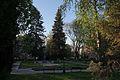 Сквер Масарика, Ужгород.jpg