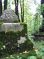 Смоленское кладбище 8.JPG