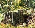 Фото путешествия по Беларуси 726.jpg
