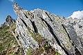 Цветущая смолевка на скалах Северного Урала.jpg