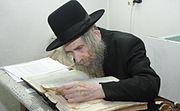 הרב אהרן לייב שטינמן