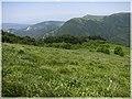 ხედი სალომეს მთიდან - panoramio.jpg