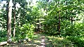 きながし公園 Kinagashi park.jpg
