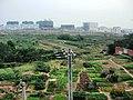 合肥市大铺头 - panoramio.jpg