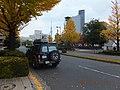国技館前のイチョウ - panoramio.jpg