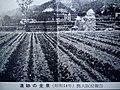 日下貝塚の風景その1.jpg