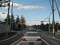 杜の丘団地 入り口 Tomiya - panoramio.jpg