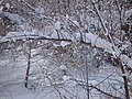 阿勒泰的大雪 余华峰 - panoramio - 余华峰.jpg