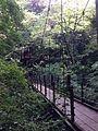 高尾山のつり橋(みやま橋) - panoramio.jpg