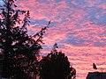 -2021-01-13 Sunrise, Trimingham, Norfolk (1).JPG