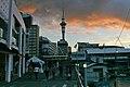 01 Auckland New Zealand-4364.jpg