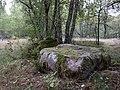 04846-Gravfält, stensträng och skålgropssten-1.jpg