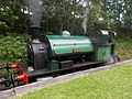 07I07I2019 Tanfield Railway D4.jpg