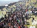 14 Marsi Dita e Veres- Kalaja e Lezhës - panoramio (27).jpg