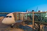 15-07-11-Flughafen-Paris-CDG-RalfR-N3S 8902.jpg