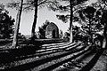15.- Chozo de la Ceja, menos conocido como cuco El Coto - II Los pinos tejen su propia red de sombras (16776099115).jpg