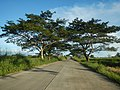 1567Franciso Viola Highway San Rafael Bulacan 08.jpg