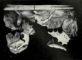 1911 Britannica - Aegean -Tiryns.png