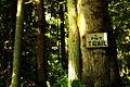 1a Alger Alp Trail (7518585398).jpg