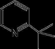 Struktur von 2-tert-Butylpyridin