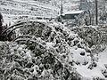 2008银吉杜家坝雪景 - panoramio.jpg