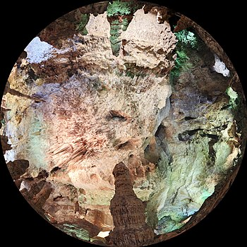 200 - Grotte de Carlsbad - Février 2010.jpg