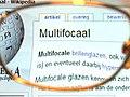 20100105 MultifocalGlass.jpg
