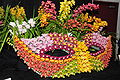 2010 Pacific Orchid Expo 10.jpg