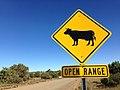 2014-365-287 Open as in Range (15353646637).jpg