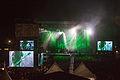 20140803-373-See-Rock Festival 2014-Slayer.jpg