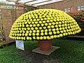 2015士林官邸菊展 Shilin Official Residence Chrysanthemum Show - panoramio.jpg
