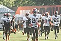 2016 Cleveland Browns Training Camp (28190362374).jpg