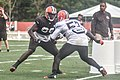 2016 Cleveland Browns Training Camp (28614344271).jpg
