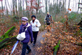 2018-12-22-December-watercolors.-Hike-to-the-Ratingen-forest. File-09.png