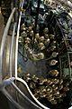 24 MEU Deployment 2012 121129-M-KU932-044.jpg
