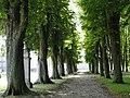 59394 Nordkirchen, Germany - panoramio (119).jpg