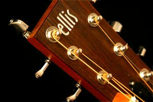 Ellis Guitars - Image: 7String Resonator Nut 2 3