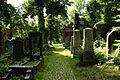 9831viki Cmentarz żydowski na Ślężnej. Foto Barbara Maliszewska.jpg