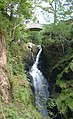 AIRA FORCE 2.jpg