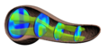 A 3D map of the islet density routes throughout the healthy human pancreas.PNG