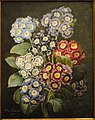 A Bouquet of Auriculas by Pierre Joseph Redoute, dated 1837, watercolor on vellum - National Gallery of Art, Washington - DSC09741.JPG