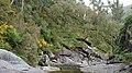A Pobra do Caramiñal río Pedras 56.jpg