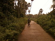 A Road to a village from Ponduru in srikakulam district