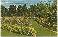 A colorful corner of Baconsfield Park, Macon, Ga. (8367054949).jpg