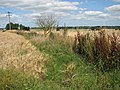 A field boundary - geograph.org.uk - 1425431.jpg
