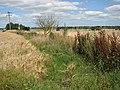 A field boundary - geograph.org.uk - 1425431.jpg