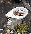 Abandoned toilet seat.jpg