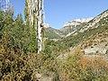 Abella de la Conca. Barranc de Caborriu 1.jpg