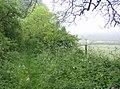 Above Tout Hill - geograph.org.uk - 437836.jpg
